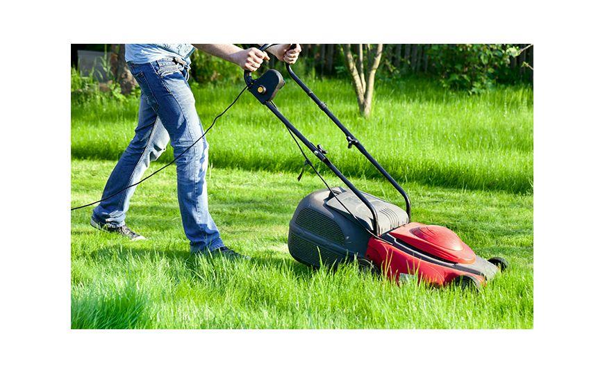 Как не допустить размножение комаров на вашем дворе